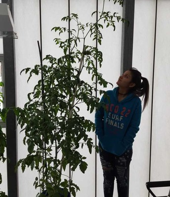 ESL Science in the Greenhouse