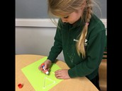 Creating 2D shapes