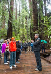 Muir Woods Rangers are excited to announce our 2nd interpretation training for volunteers, interns, and partners.