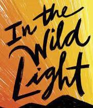 IN THE WILD LIGHT by Jeff Zentner