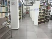 פוד'ה נאטור זידאן