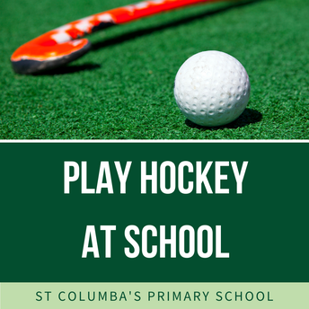 Curtain Hockey at school in Term 1