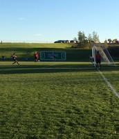 Sectional Soccer Losses