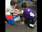 Envisioning During Reading
