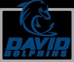 DAVID HOME PAGE