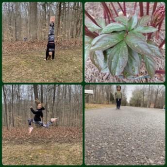 Nature walks!