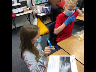 Text Feature Surgery in 4th Grade!