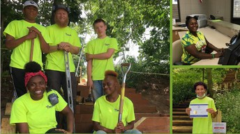 Tree Trust Summer Employment Opportunity