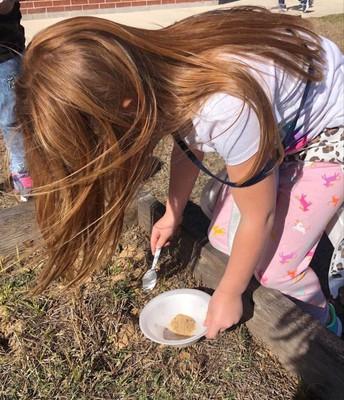 What's in Soil?