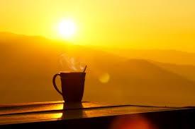 Morning Drop Off