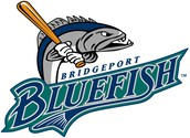 Mother/Son Bluefish Game