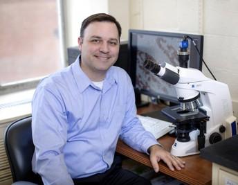 Michael Tangrea, Ph.D.