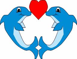 IMPORTANT Valentine's Day Information