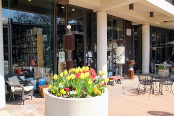 RESTON's USED BOOK SHOP: a hidden gem in the heart of Lake Anne Plaza