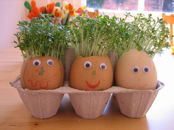 Spring Science Experiments