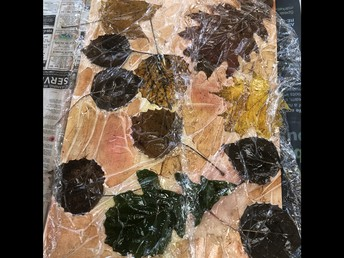 Wet painting with leaves on top