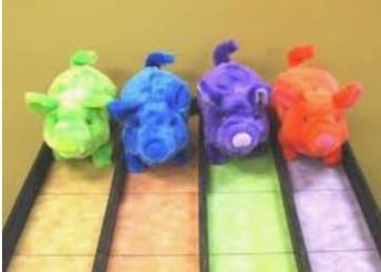 Pig Races--PTO Fundraiser