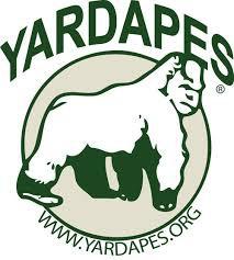 1/28  -  Yard Apes, New Milford