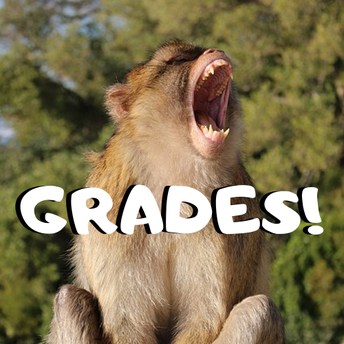 Grade Send