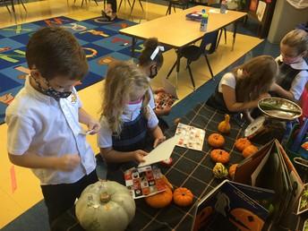 Our pumpkin center