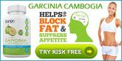 Sonix Garcinia Reduce your caloric intake