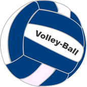 Fishers Cubs Volleyball Club