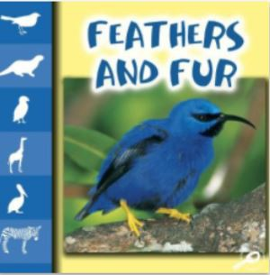 Feathers and Fur PDF Book