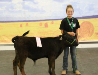 Bucket Calf Record books Due July 21st !