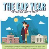Understanding Gap Year Options