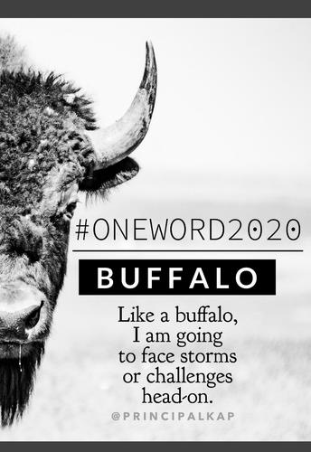 Welcome Back Buffaloes!
