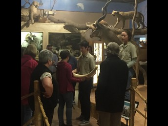 ...Wildlife Museum and learning from...