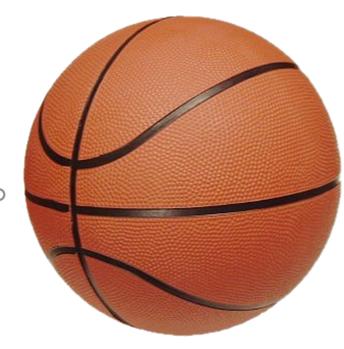 Back to Basics Basketball Camp