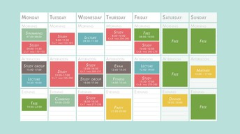 Organize your Schedule and Study Space