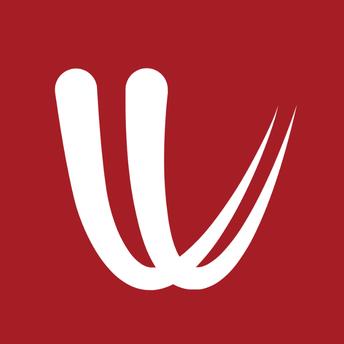 Windy.com icon