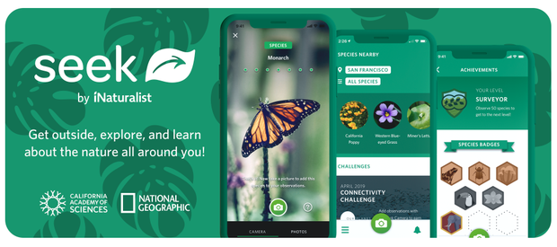This photo shows the Seek app by iNaturalist.  There are photos of what the app looks like on a phone.