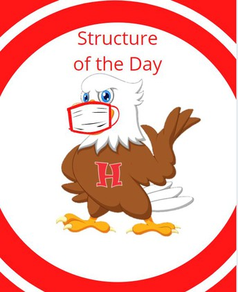 Structure Of The Day