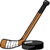 Irondale Hockey Game