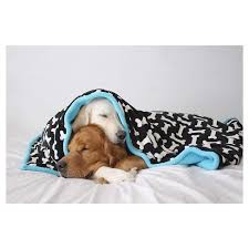 Support Our Towel/Blanket Drive for the Dogs of the Montgomery County Animal Shelter!