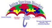Understanding Special Education - Student's with Aspergers