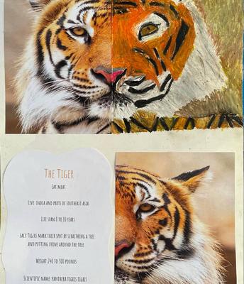 Anni-Bella Nolan - The Tiger