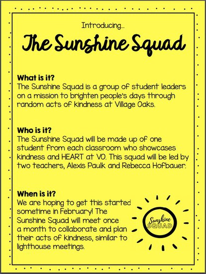 Sunshine Squad Flyer