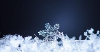 February  - 3rd Grade Snowflakes