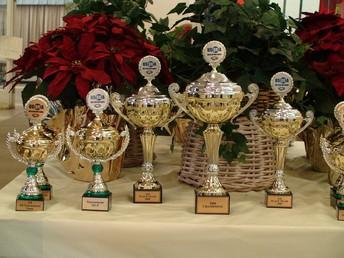 Elementary Awards