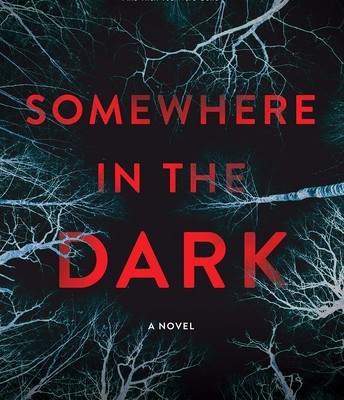 Somewhere in the Dark – RJ Jacobs