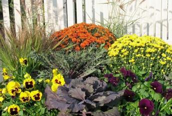 Fall Garden Saturday Nov. 2