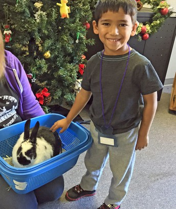 Students can spend Christmas break with awesome animals!