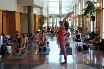 Lehigh Valley Yoga Festival - July 13