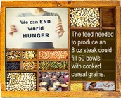 Not to mention, Veganism can put an end to third world hunger!