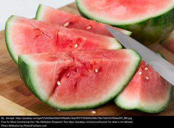 favorite food is watermelon