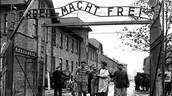 Auschwitz Worker